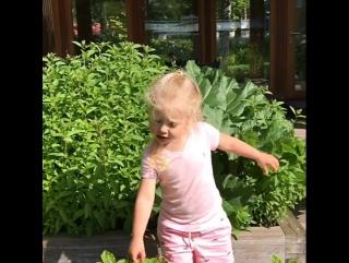 Максим Галкин с детьми снял пародию на телеведущую Елену Малышеву