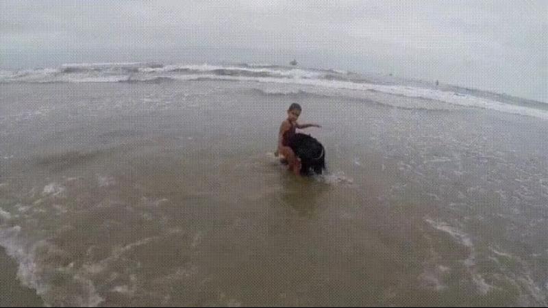 Собака оберегает девочку от больших волн