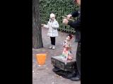 Летний сад, куклы - Цыганка