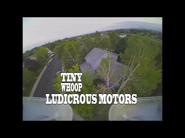 Ludicrous Motors Testing - Tiny Whoop