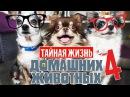 ГОВОРЯЩИЕ СОБАКИ УЧАТ СОБАКУ МИШУ ГОВОРИТЬ Тайная жизнь домашних животных по русски 4 серия