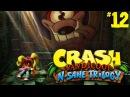 Crash Bandicoot N. Sane Trilogy (CB1) 12(одни нервы)