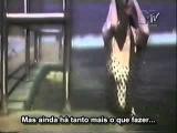 Colin Hay Band - Into My Life (Legendado em portugu