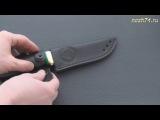 Нож Пижон (Граб, 95Х18) -  nozh74.ru