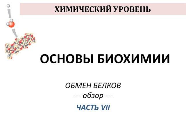 ОБМЕН БЕЛКОВ - часть 7