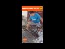 Мужчина чистит подсолнух при помощи велосипеда