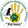 Хатико- защита животных в Кызыле