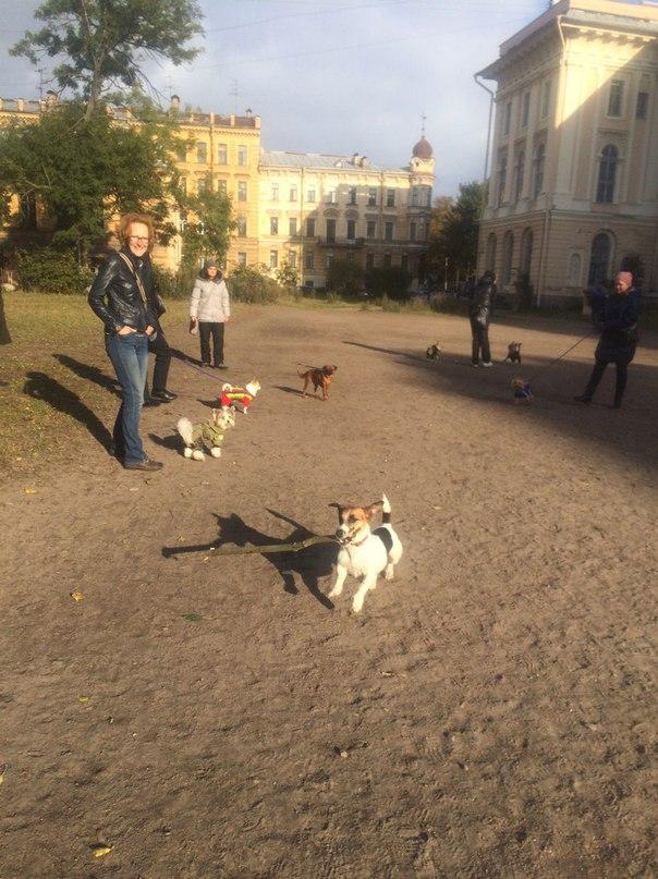 Наталья Павлова | Санкт-Петербург