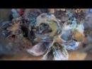 Mixed Media Album SEAWAYS by Ragozina Olga