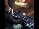 водитель автобуса на кавказе