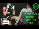 Muay Thai Tricks using the Teep in Sparring / Fighting Tutorial