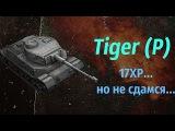 Tiger (P). 17XP, но гору не отдам... #патентКислого