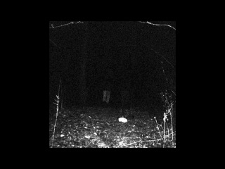 Witch In Her Tomb - S/T [Full CS]