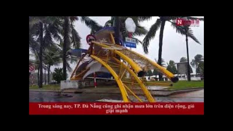 Clip Đà Nẵng ngổn ngang cây cối biển hiệu sau Bão số 12