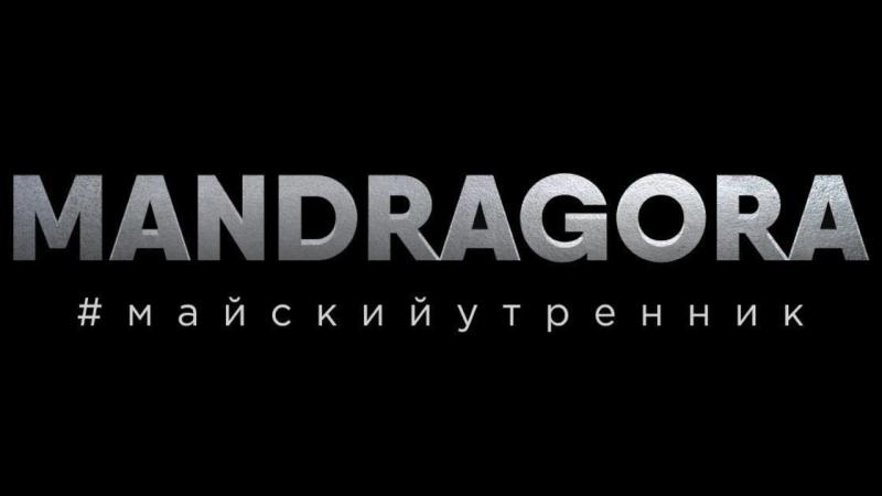 MANDRAGORA. Дар иных.