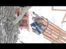 Зимний активный отдых в ZaDoor
