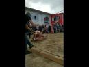 Василиса Ермакова - Live
