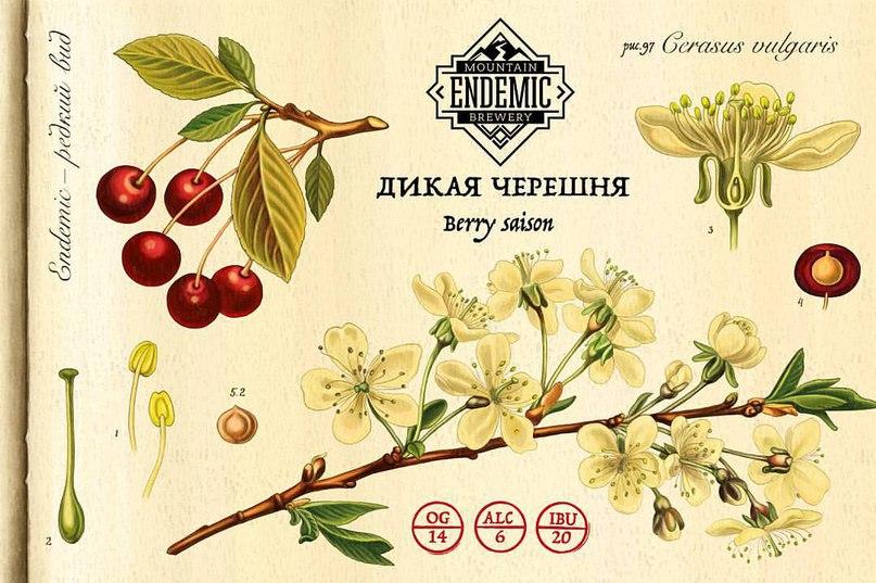 Алексей Сёмин |