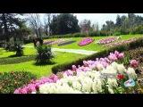Таджикистан - «Парк Ирам» Боги «Ирам» تاجیکستان 2017