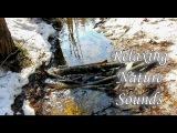 Relaxing Nature Sounds Water Sounds Релаксация Звуки природы Весенние Ручьи