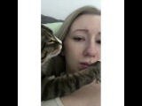 Cat Trying To Kiss Girl
