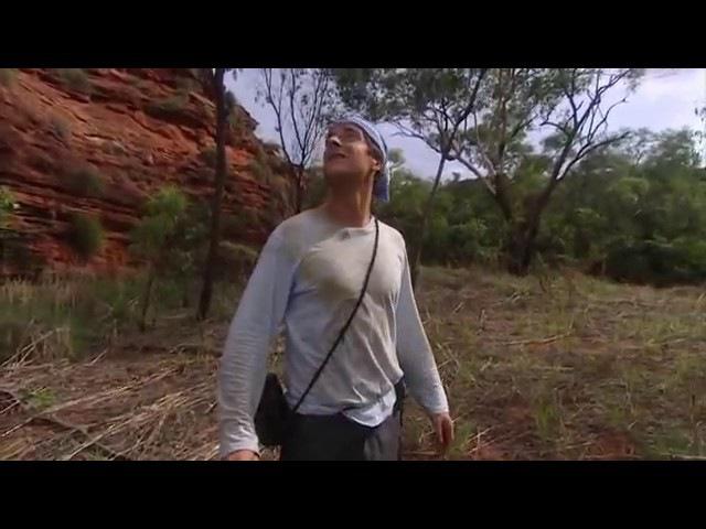 Выжить любой ценой Австралия Все серии 1сезон, 13 серия