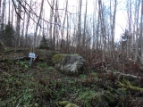 Камень-щеглец на Вишере.