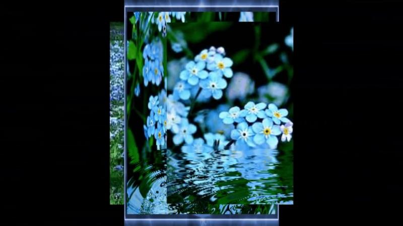 Жизнь -- это дар и Божья Благодать..(Красивая музыка для души...)_HD.mp4