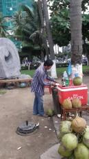 Вьетнам (кокос)