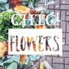 Chic! flowers| Доставка букетов, розы, пионы