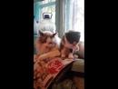 Синхронное умывание)) Котенок Шустрик  ищет дом!!!