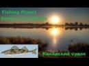 Fishing Planet - Канадский судак (Sander canadensis)