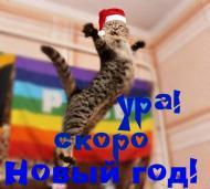 Зима. С наступающим Новым годом!