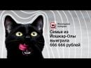 Семья из Йошкар-Олы выиграла 666 666 рублей