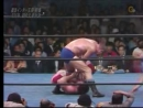 AJPW - Terry Funk vs Dory Funk Jr.