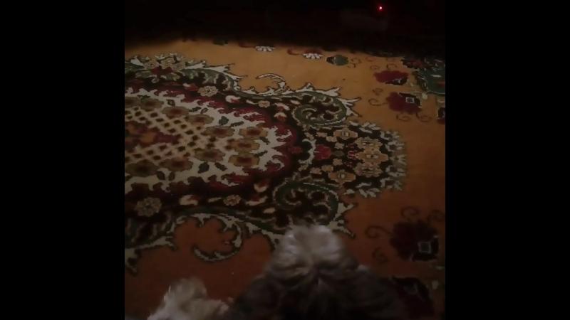 наш Крис смотрит кино