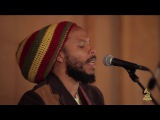So Much Trouble In The World   Ziggy Marley live performance  GRAMMYs