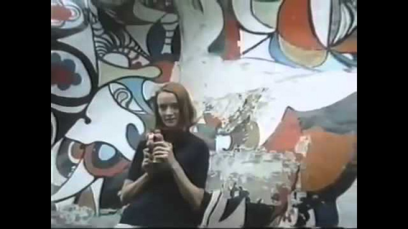 Niki de Saint Phalle Introspections and Reflections