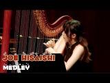 Joe Hisaishi - Medley - Harp &amp Flute
