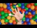 ПЕСЕНКА ПРО ПАЛЬЧИКИ на русском, СЕМЬЯ ПАЛЬЧИКОВ УЧИМ ЦВЕТА УЧИМ ПАЛЬЦЫ Finger Family...