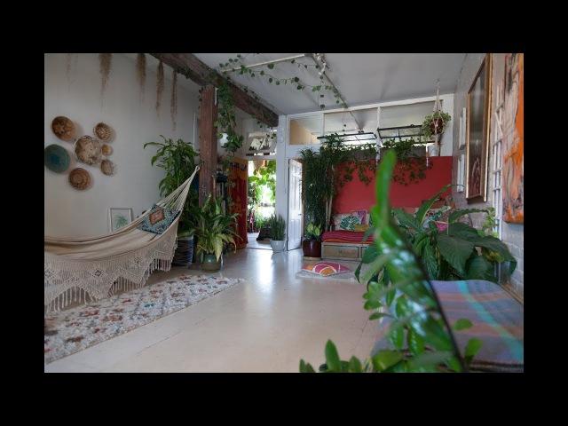 Ep 023, Part 5: 670 PLANTS HOUSEPLANT TOUR, Living Room (Summer 2017)