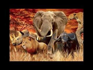 Африканская саванна. Последний шанс выжить .Дикая природа HD