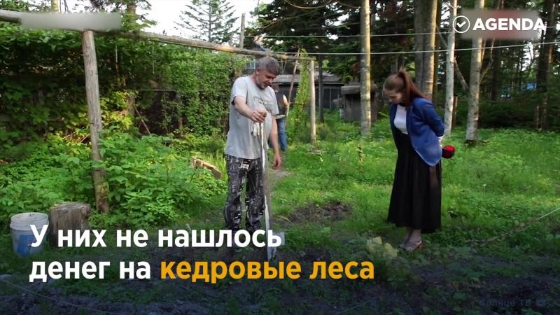 Человек в одиночку высадивший тысячи деревьев.