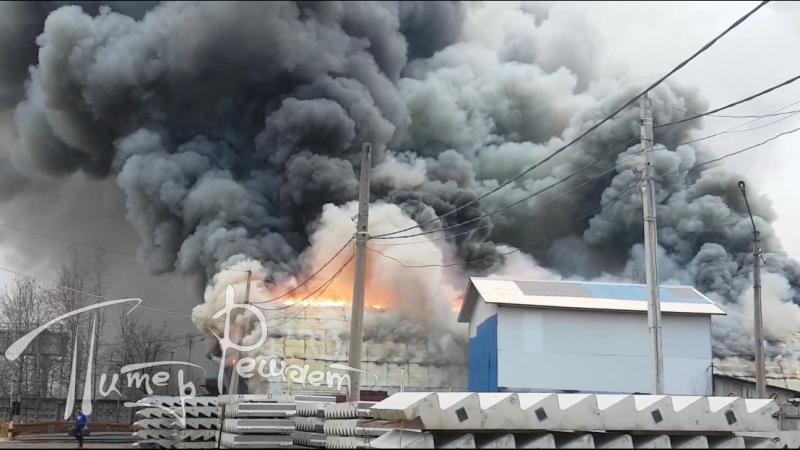 Большой пожар в Мурине (09.11.2017) [2]