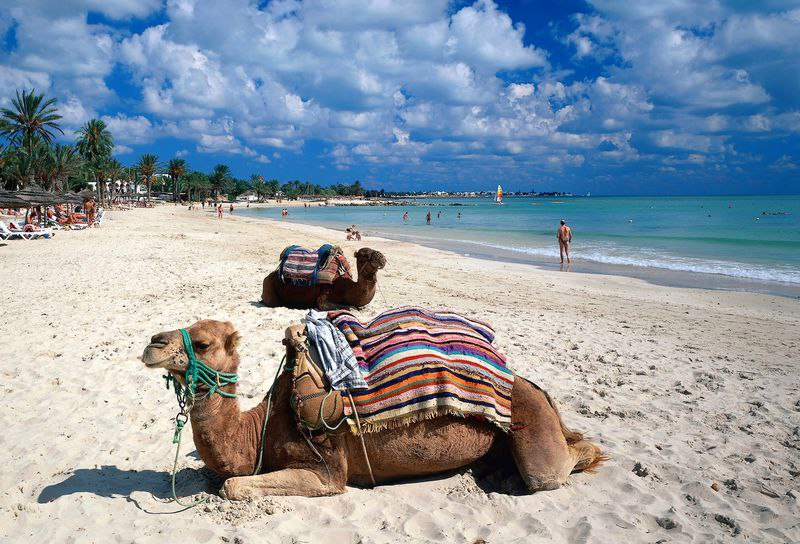 Спец цена при бронировании сегодня и завтра!!!! Тунис, Джерба на 7 ночей за 13689 руб. с человека!!! Спешим!