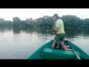 Рыбалка на сома. Квок