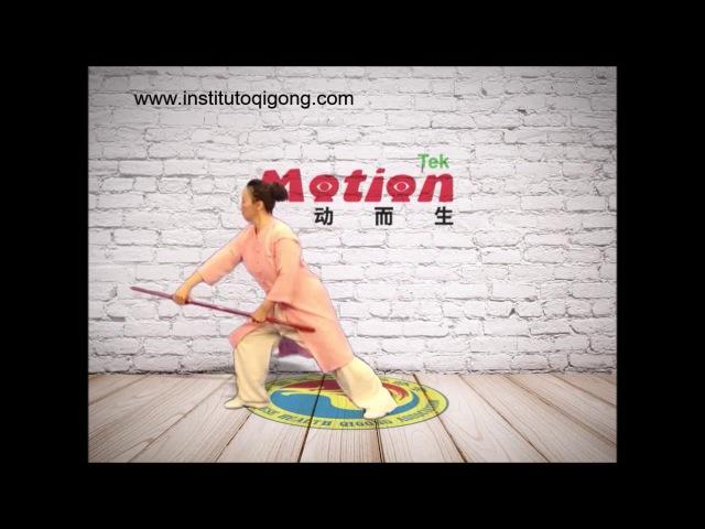 Qigong de Salud con bastón