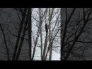 Обрезка, кронирование и удаление деревьев, удаление пней