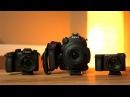C200 vs GH5 vs A6500 - Low Light - Autofocus - 4K 120 FPS Detail Comparison