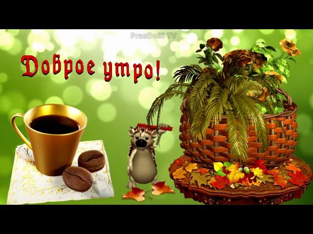 Самое красивое пожелание с добрым утром! Доброе утро!
